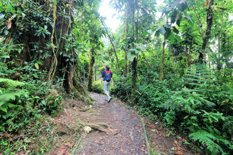 santa elena cloud forest reserve
